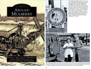 MulberryPhosphate